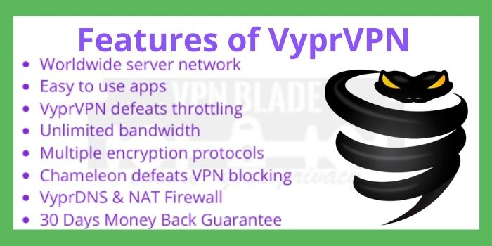 Features of VyprVPN
